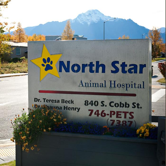 North Star Animal Hospital | Palmer, Alaska - North Star ...