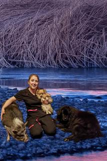 Alyssa | North Star Animal Hospital | Palmer, Alaska ...